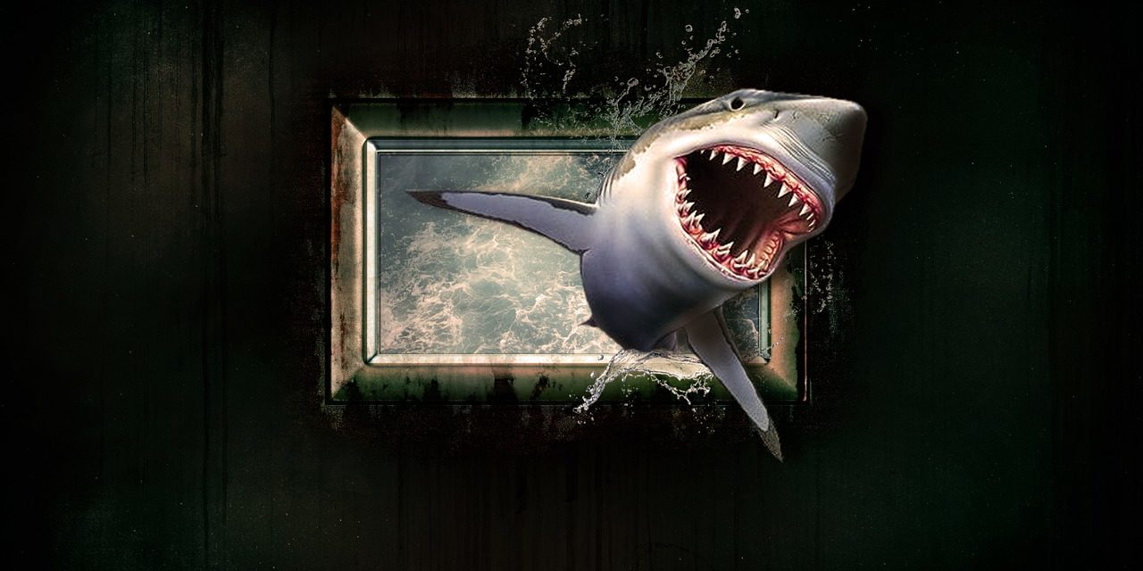 YOU ARE NOT A FRAUD, YOU ARE A MOTHERF*CKING SHARK